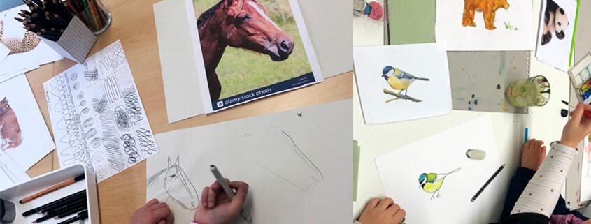 Tiere Zeichnen für Kinder